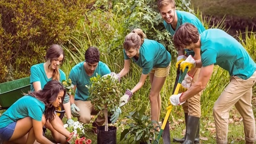 A group of six young adults wearing teal blue t-shirts and khaki pants work together outside to plant trees and flowers.